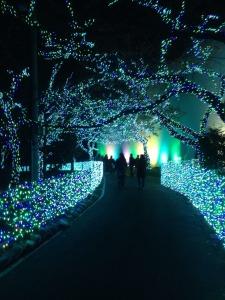 Yomiuri Land (Fun Park) 1